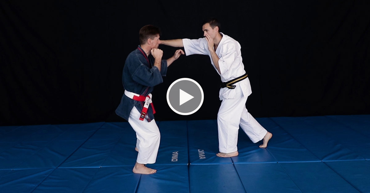 Nihon Tai Jitsu avec Richard Folny [vidéo]