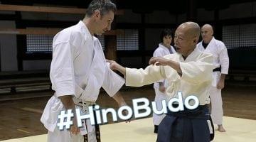 Au coeur des principes avec Hino Akira