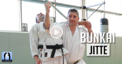 bunkai jitte karate shotokan video avec lionel froidure