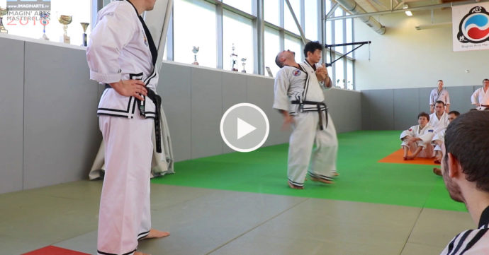 hapkido jin jun kwan lee chang soo video