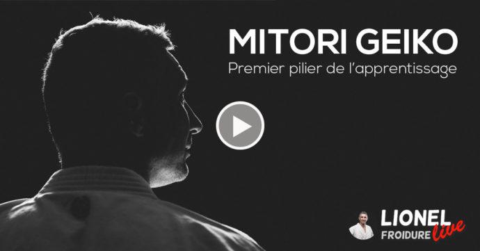 Discussion vidéo autour de Mitori Geiko - Karaté avec Lionel Froidure