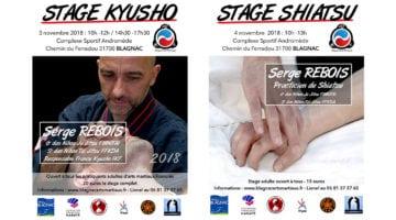 Stage Kyusho & Shiatsu – Novembre 2018 – Toulouse