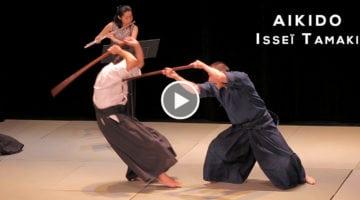 Aïkido Isseï Tamaki - démonstration NAMT 2017