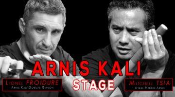 Stage Arnis Kali Villepinte novembre 2018 - affiche horizontal