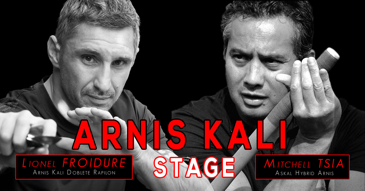 Stage Arnis Kali - Villepinte [93]
