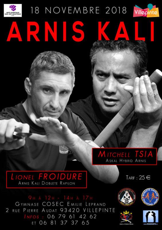 Stage Arnis Kali Villepinte novembre 2018