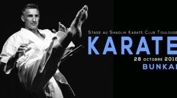 stage karate bunkai avec lionel Froidure 28/10/2018 Toulouse