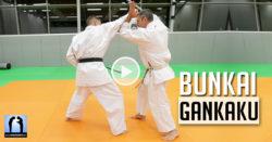 karate bunkai gankaku vidéo avec Lionel Froidure