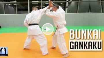 Bunkai Gankaku – KARATE [vidéo]