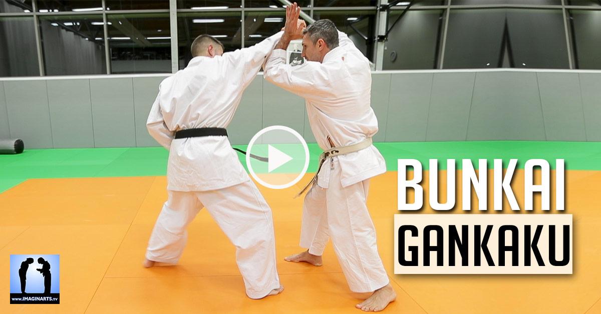 Bunkai Gankaku - KARATE [vidéo]