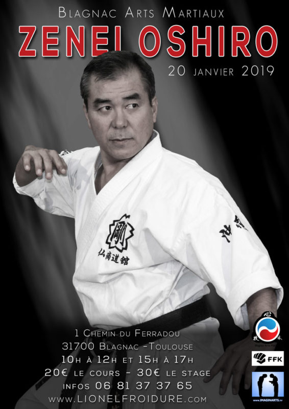 Stage Zenei Oshiro - Blagnac Toulouse janvier 2019