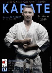 stage lionel froidure karate aveyron 2019 février