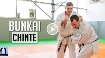 karate bunkai chante Lionel Froidure