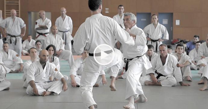 jean-françois tisseyre karate