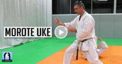 bunkai morote uke - karate avec Lionel Froidure
