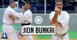 karate jion bunkai avec Lionel froidure