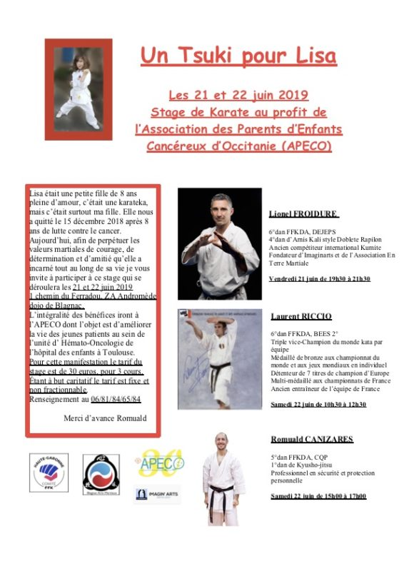 stage karate cancer Lisa Toulouse Blagnac