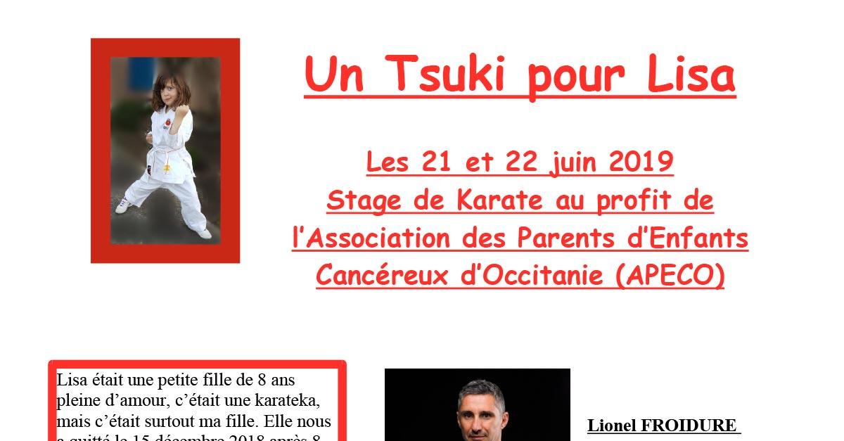 Un Tsuki pour LISA - Stage Karaté