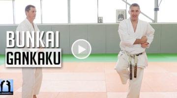karate bunkai gankaku avec Lionel froidure