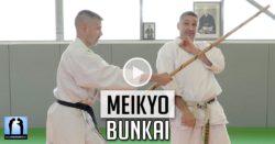 bunkai meikyo karate lionel froidure