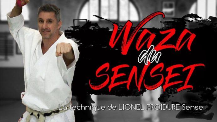 waza du sensei avec Lionel Froidure