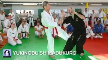 stage karate avec Yukinobu shimabukuro 2019 vidéo