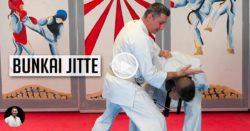 bunkai jitte - vidéo karate