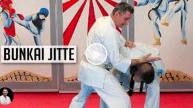 Bunkai Jitte - Karate