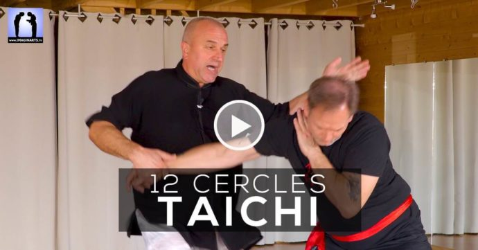 applications tai chi yang - vidéo Thierry Alibert