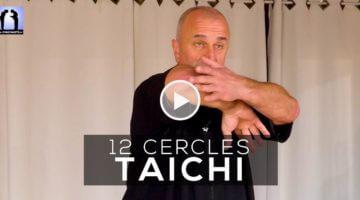 Taichi application des 12 cercles avec Thierry Alibert