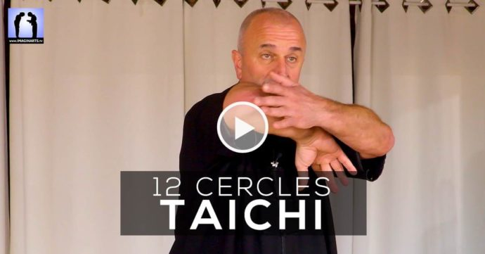 Taichi application des 12 cercles avec Thierry Alibert