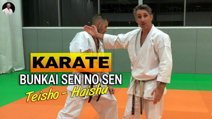 bunkai sen no sen karate avec teisho uke et haishu uke