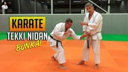 Bunkai Tekki Nidan Karaté avec Lionel Froidure