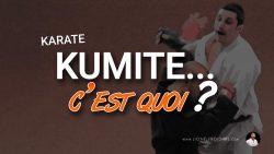 Le kumite c'est quoi et cela sert à quoi ? Karate