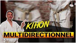 conseils kihon multidirectionnel karate shotokan avec Lionel Froidure