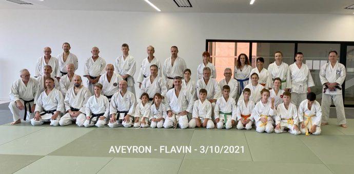 flavin-2021