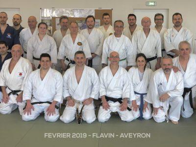 stage-flavin-karate-fevrier-2019