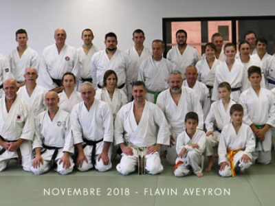 stage karate lionel froidure aveyron 2018